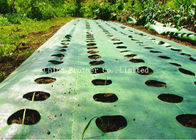 Durable Woven Pp Woven Ground Cover , Woven Polypropylene Landscape Fabric Plant Protection