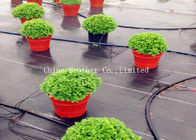 China Durable Garden Ground Weed Control Fabric Farm Mulch Film Black Color Eco - Friendly factory