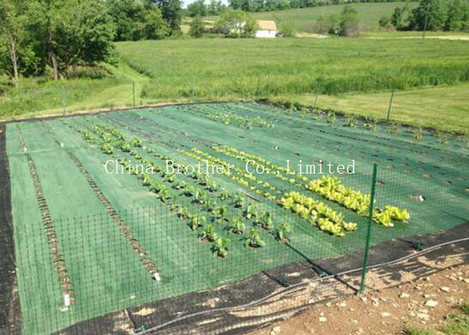 Ground Weed Control Fabric Barrier